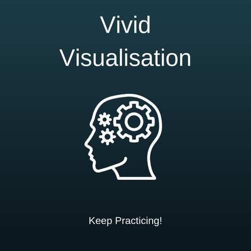 vivid-visualisation